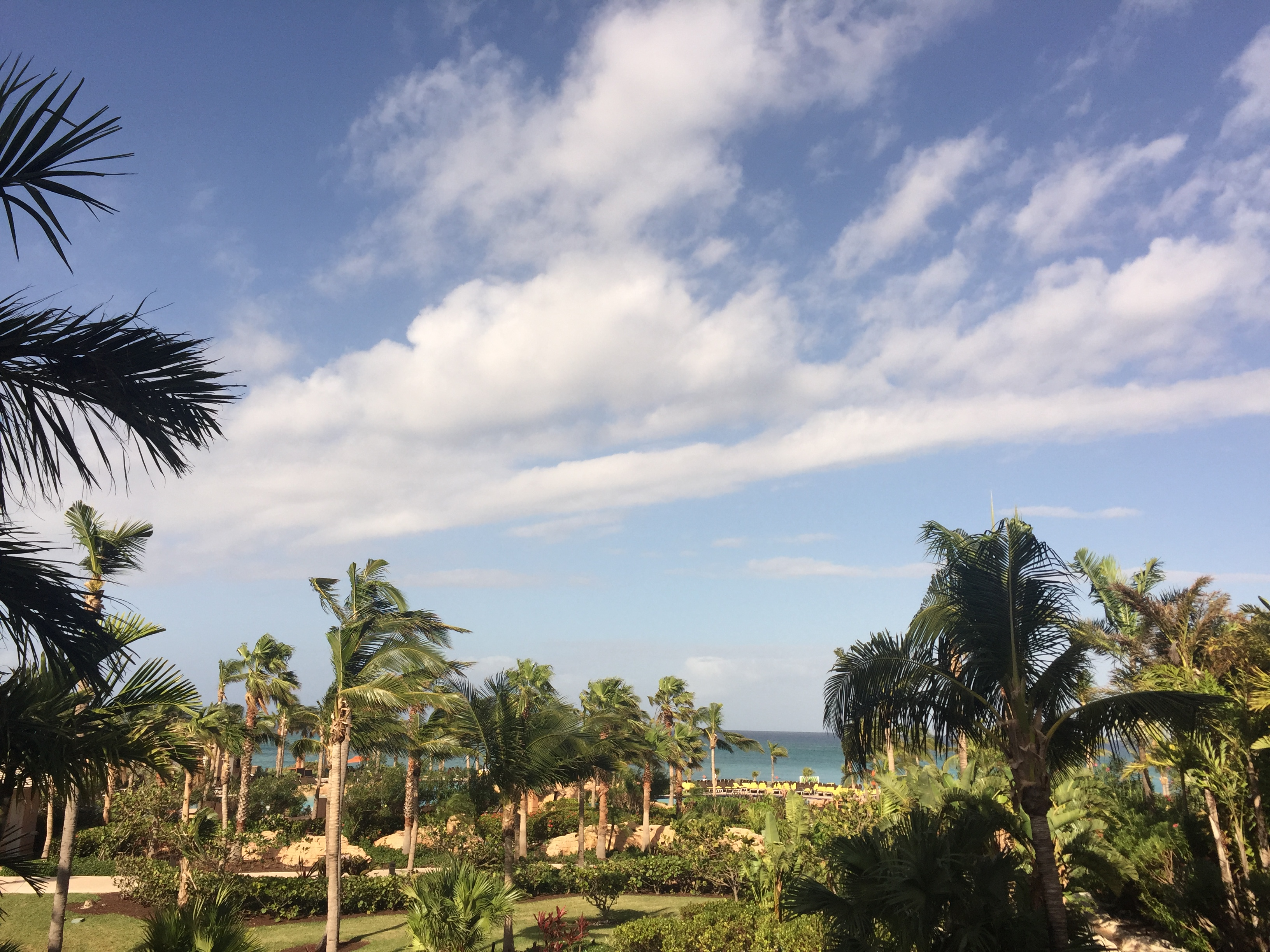 Review The Cove Atlantis, Autograph Collection Hotels