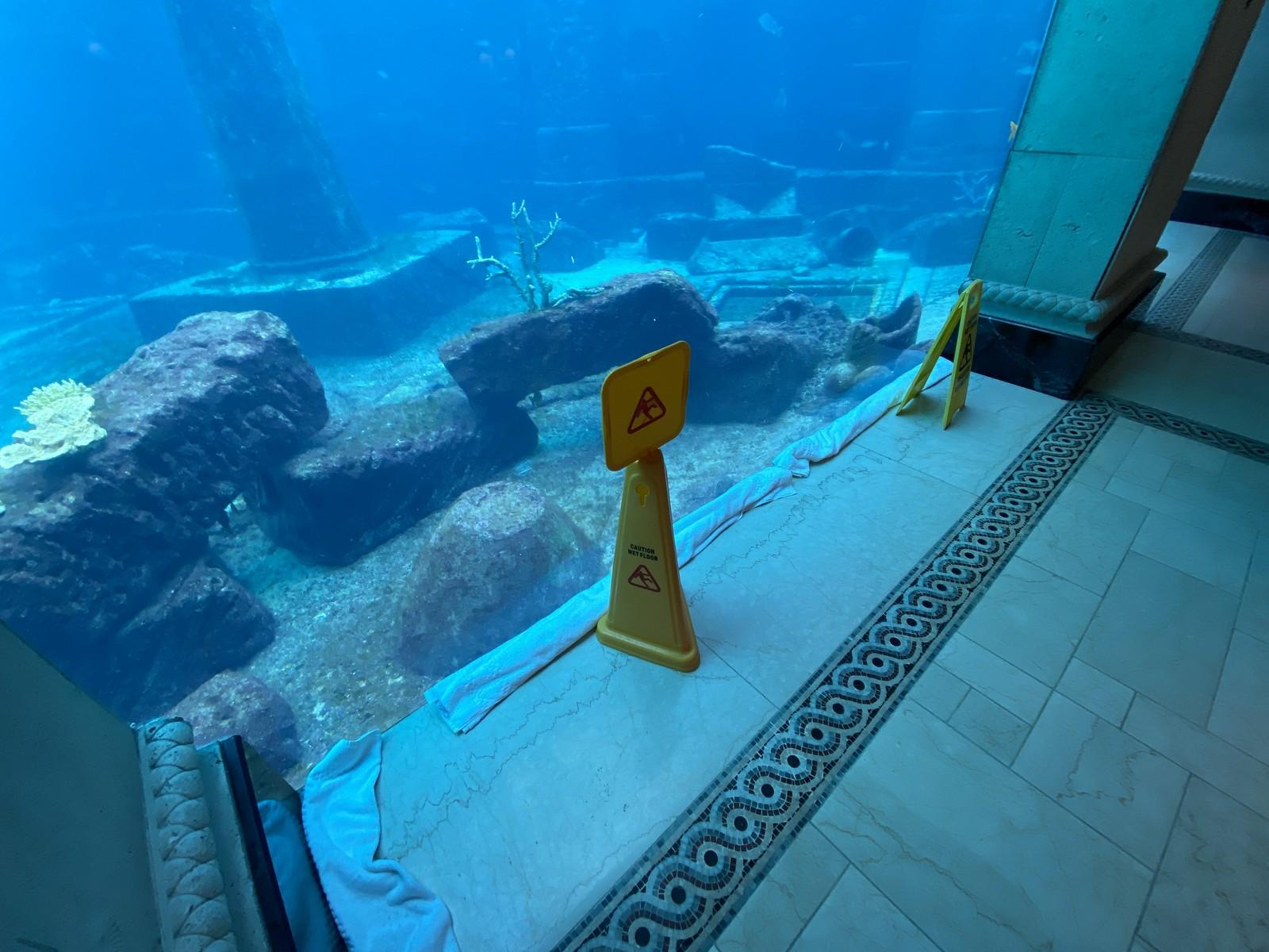 Atlantis Bahamas Review