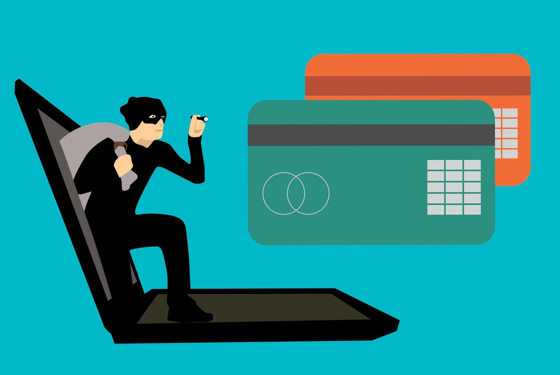Fraudulent Credit Card Application